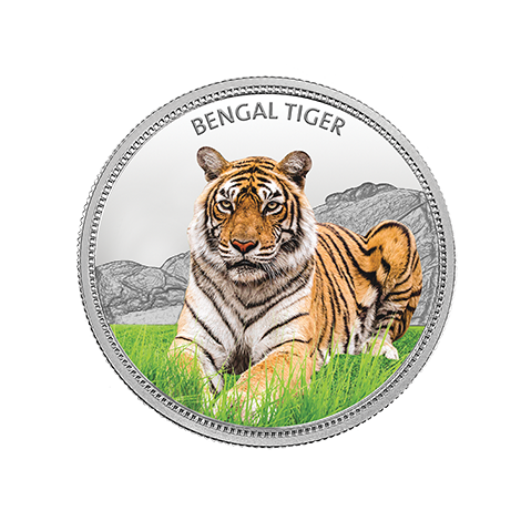 https://www.mmtcpamp.com/sites/default/files/BengalTiger_13.png